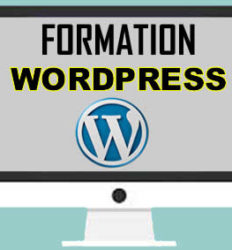 Formation wordpress au Cameroun, Yaoundé, Douala, Bafoussam, etc.
